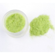 Флок пудра, пыльца бархатная, 10 гр, цвет: салатовый