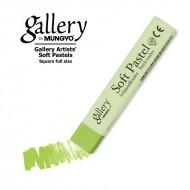 Сухая пастель мягкая профессиональная квадратная, MUNGYO Gallery цвет № 024 перманентный зеленый