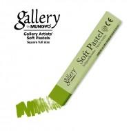 Сухая пастель мягкая профессиональная квадратная, MUNGYO Gallery цвет № 025 зеленый лист