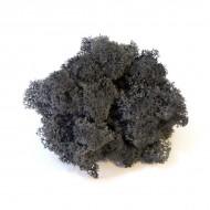 Мох ягель стабилизированный, цвет 52 Black, вес 5 гр