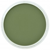 Пастель PanPastel, цвет №660,3 Chromium Oxide Green Shade
