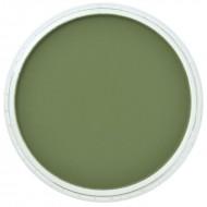Пастель PanPastel, цвет №660,3 Chromium Oxide Green Shade