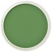 Пастель PanPastel, цвет №660,5 Chromium Oxide Green