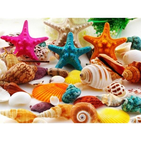 Ракушки морские - набор 500 г, арт.2