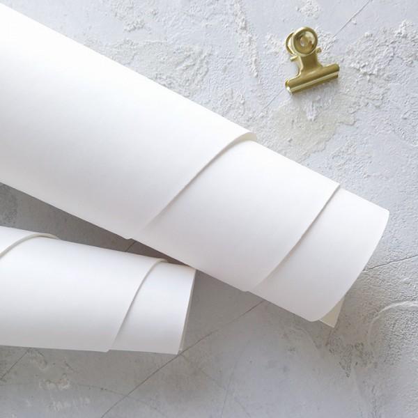 Переплетный кожзам (Италия), цвет белый арт. kz-b